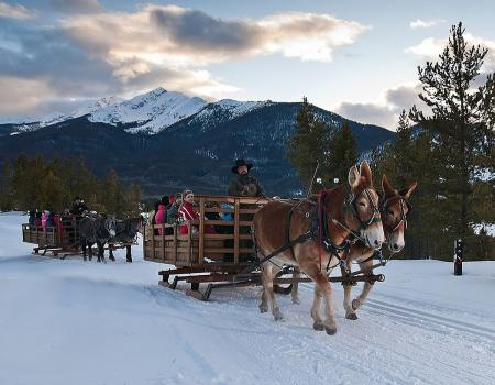 Sleigh Ride Breckenridge Summit County Dinner