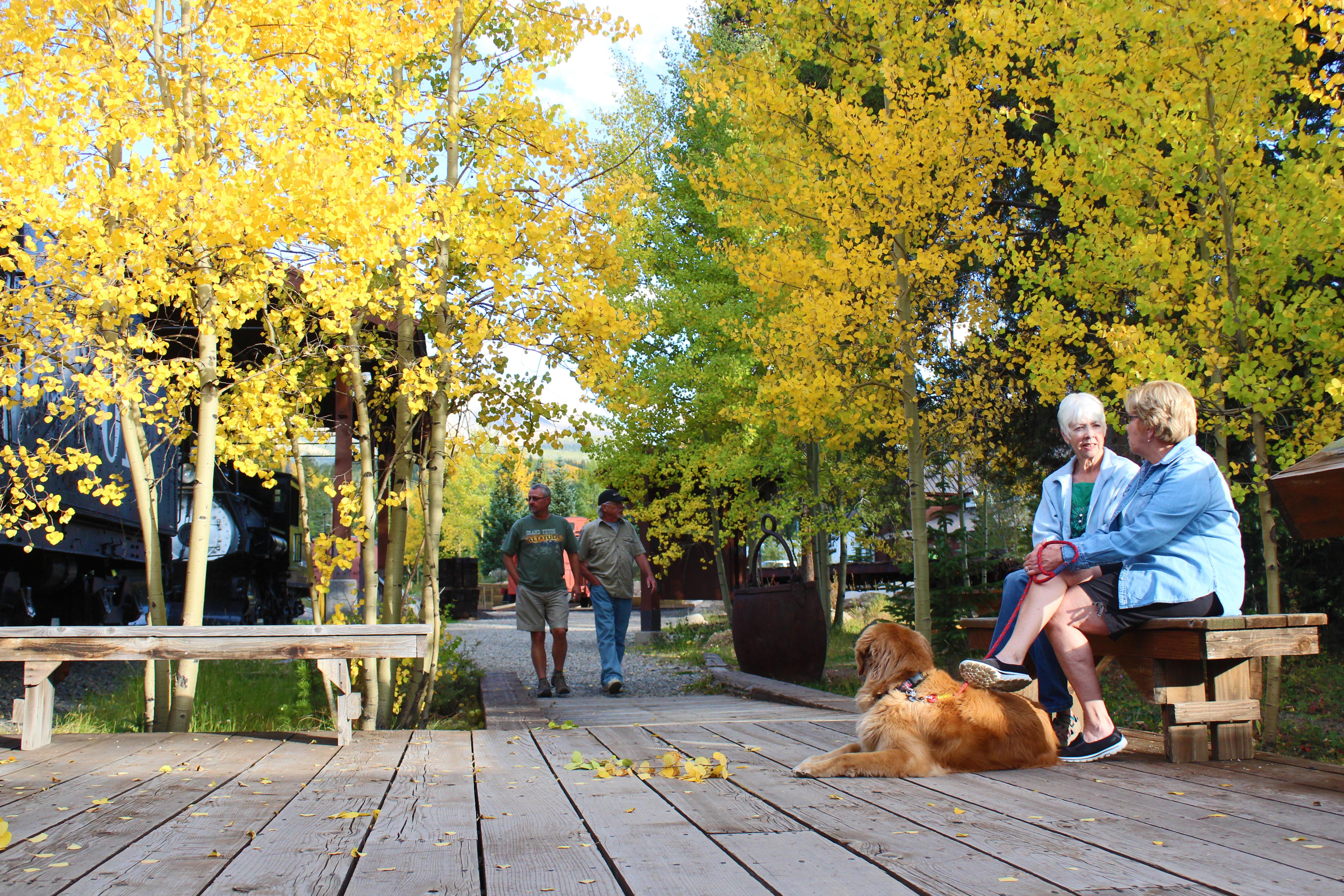 Dog-Friendly in Summit County